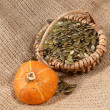 Pumpkin seeds — Foto Stock