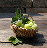 Fresh gooseberries — Stock Photo
