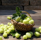 Fresh gooseberries — Stock Photo