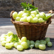 Fresh gooseberries — Stock Photo #28057069
