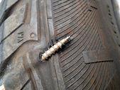 Flat tyre — Stock Photo