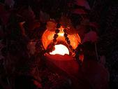 Arrangement ash autumnal — Stock Photo