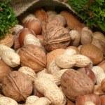 Mixed nuts — Stock Photo #8083800