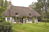 Traditional thatched roof cottage — Foto Stock