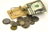 Money trapped in a mouse trap — Stock Photo