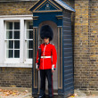 Stock Photo: British Guard