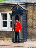 British Guard — Stock Photo