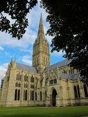 Kathedraal van salisbury — Stockfoto