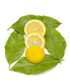 Lemon dish — Stock Photo