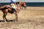 Cowboy riding a horse — Stock Photo