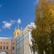 Pushkin's lyceum in Tsarskoe selo — Stock Photo