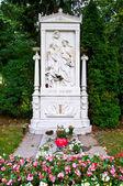 Schubert's grave — Foto de Stock