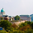 Castle of Budapest — Stock Photo