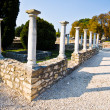 Aquincum — Stock Photo #25856451