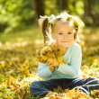Portrait of a little girl in autumn park — Stock Photo #24503689