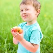 Portrait of a happy little boy with apple — Stock Photo #28950459