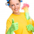 Young woman as a cleaning maid — Stock Photo #31903675