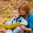 Mother is reading book with her son — Stock Photo #34846033