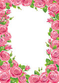Roses frame — Stock Vector