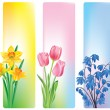 Spring flowers banners — Stock Vector