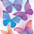 Beautiful blue butterfly — Stock Vector
