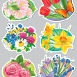 Stickers flowers — Stock Vector