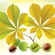Autumn chestnuts and leaves — Stock Vector