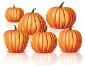 Big and small pumpkins — Vector de stock
