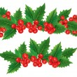 Christmas garland of holly berries — Stock Vector