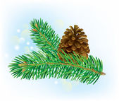 Branch of spruce with pine cone — Vettoriale Stock