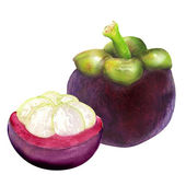 Tropical mangosteen fruit on white background — Stock Photo