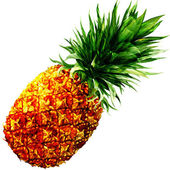 Watercolor pineapple isolated — Stock Photo