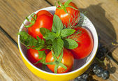 Tomatoes with herbs on the plate — Stock Photo