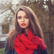 Red scarf and gloves — Stockfoto