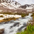 View to snow on Caucasus mountains over motion blurred stream ne — Stock Photo