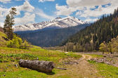 View to snow on Caucasus mountains near Arkhyz — Stock Photo