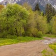 View to road at foothills of Caucasus mountains near Arkhyz, Kar — Stock Photo