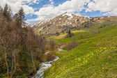 View to foothills of Caucasus mountains near Arkhyz, Karachay-Ch — Stockfoto