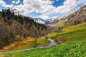 View to foothills of Caucasus mountains near Arkhyz, Karachay-Ch — Стоковое фото