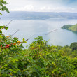 Lake toba, indonesia — Stock Photo