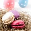 Colorful macaroons and Easter eggs — Stock Photo