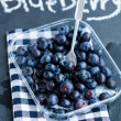 Fresh blueberries and fork — Stock Photo