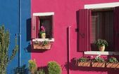 Windows and colorful walls — Stock Photo