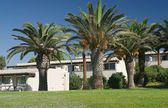 Palm trees and bungalow — Stock Photo