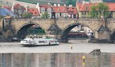 Vltava near the Charles Bridge — Stock Photo