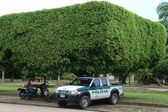 Policyjny samochód na ulicy miasta san jose del guaviare — Zdjęcie stockowe