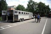 Cavallo di carrozza nel trailer — Foto Stock