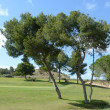 Golf courses in Orihuela Costa — Stock Photo
