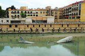 Murcia. Spain — Stock Photo
