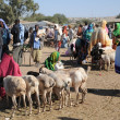 Livestock market — Stock Photo #39966373